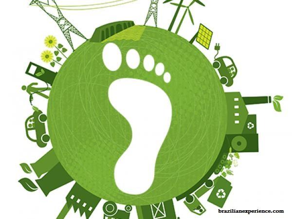 ნახშირბადის ანაბეჭდი